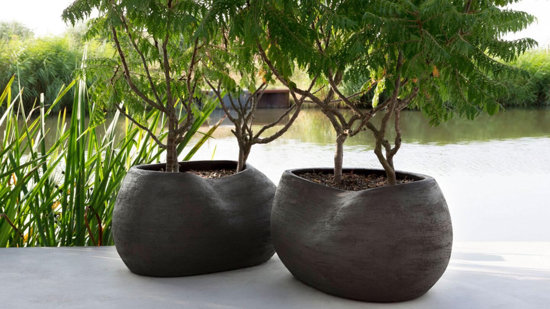 hauser-design-atelier-vierkant-bepflanzt-mit-bäumen