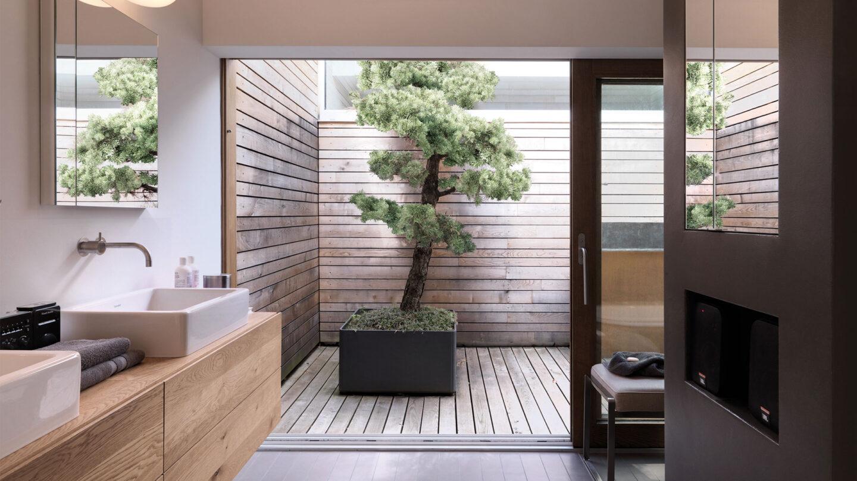 hauser-design-eternit-betongefäss-delta-mit-bonsai