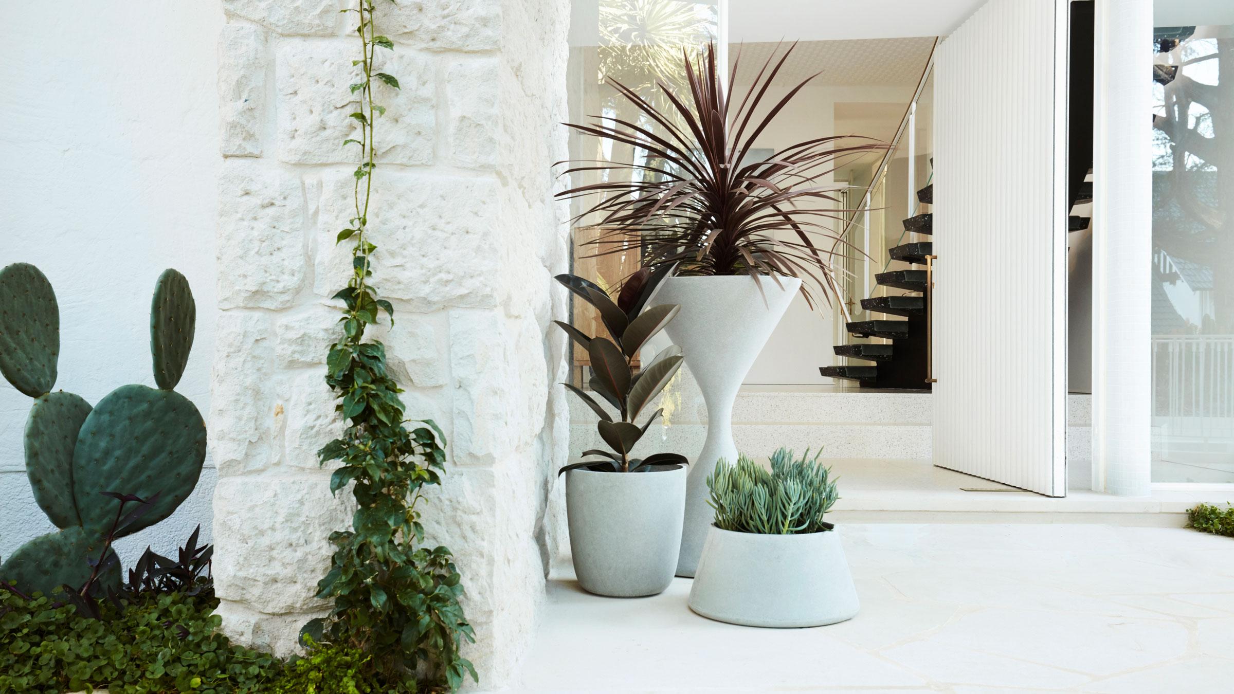 hauser-design-eternit-betongefäss-spindel-und-kyoto